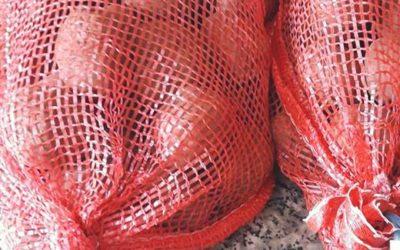 Patata Ecológica de Vilalba